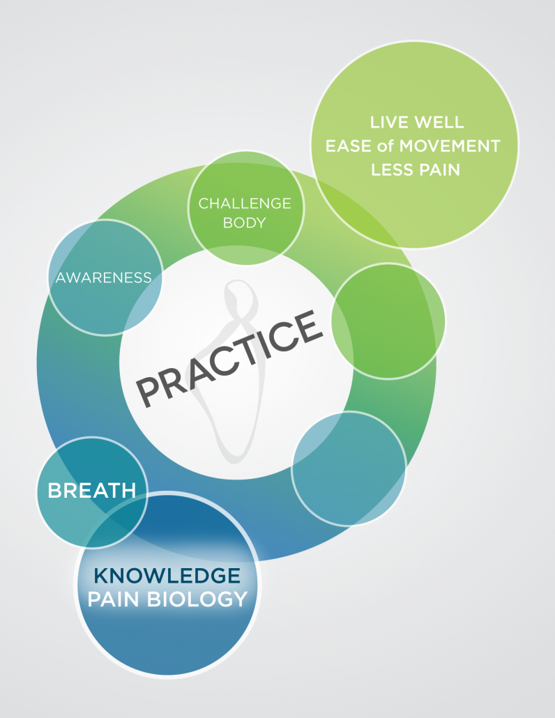 A multi-colored diagram in blues and greens showing the first 5 steps of the Pain Care for Life program—Step 1
