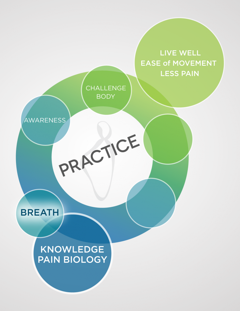 A multi-colored diagram in blues and greens showing the first 5 steps of the Pain Care for Life program—Step 2
