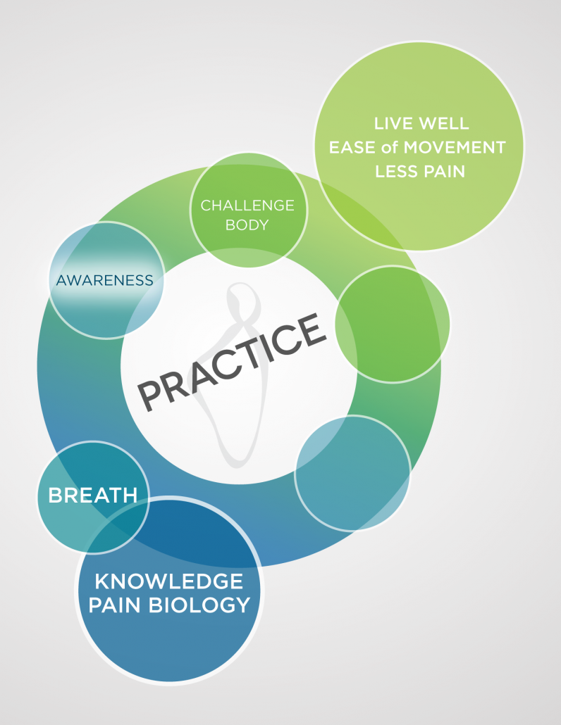 A multi-colored diagram in blues and greens showing the first 5 steps of the Pain Care for Life program—Step 3