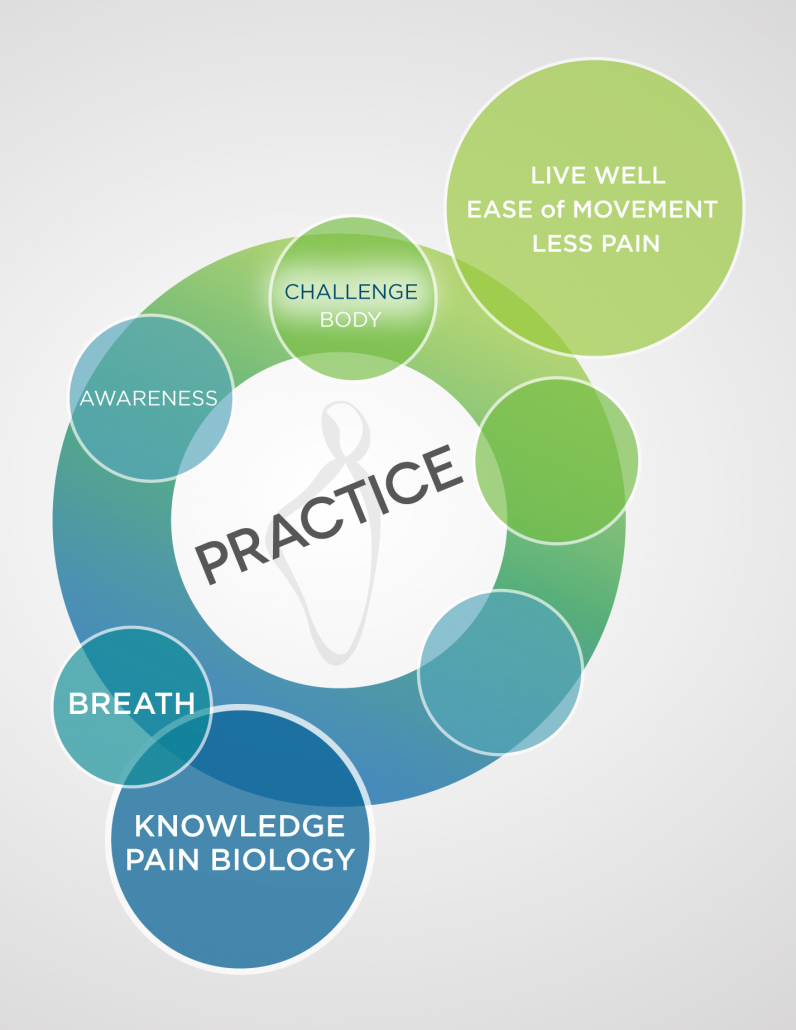 A multi-colored diagram in blues and greens showing the first 5 steps of the Pain Care for Life program—Step 4
