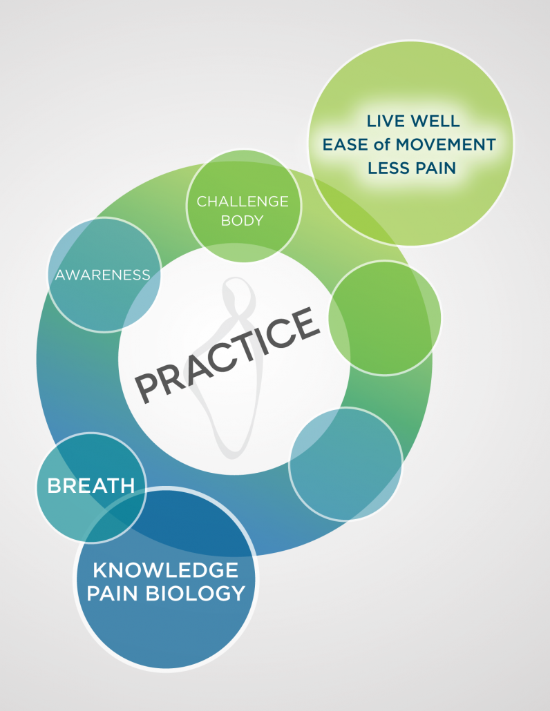 A multi-colored diagram in blues and greens showing the first 5 steps of the Pain Care for Life program—Step 5