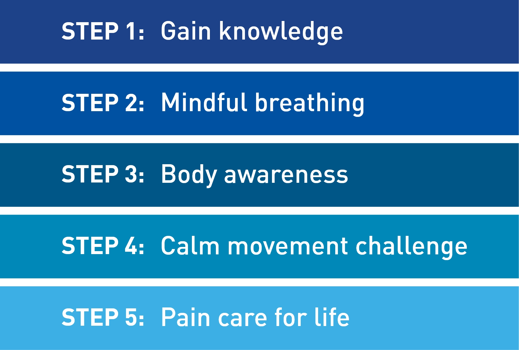 5 steps of the Pain Care for Life program